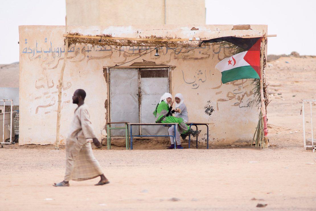 Desde el exilio del desierto