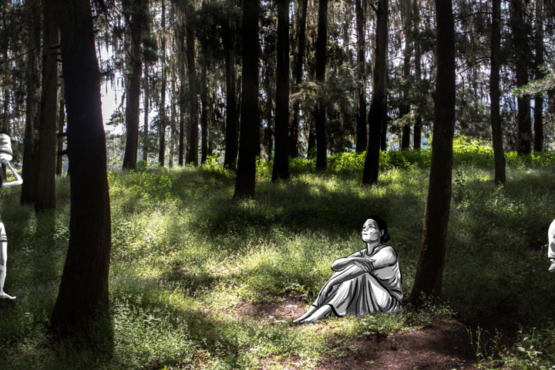 'Tierra sin ellas', Premio Desalambre 2019